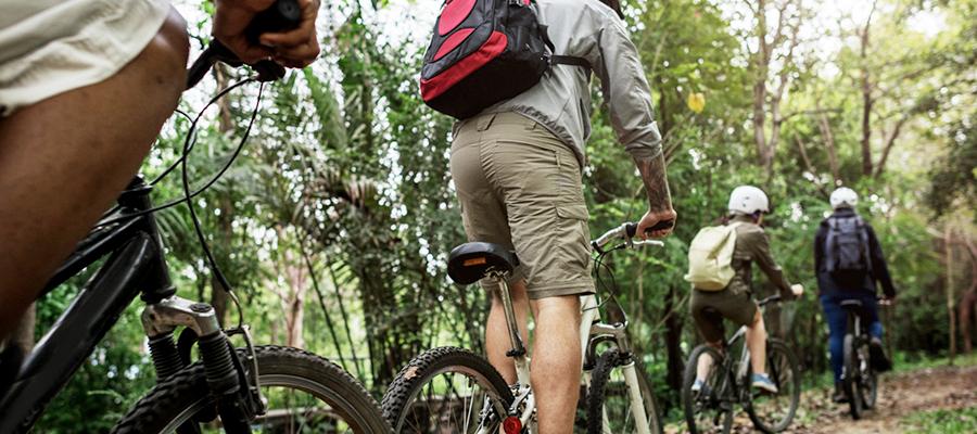 Team building éco-responsable entre collaborateurs balade à vélo